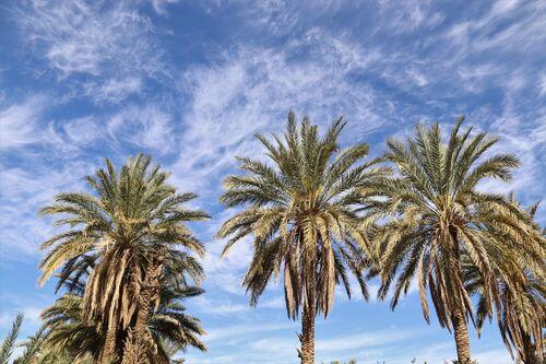 28 mars - Agadir Lehne - l'horloge à eau