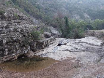Cascadelle sur le ruisseau