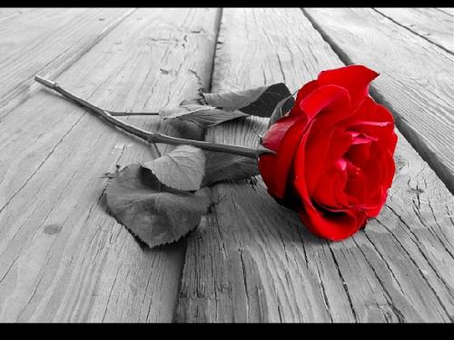 ♥ Saint Valentin ♥