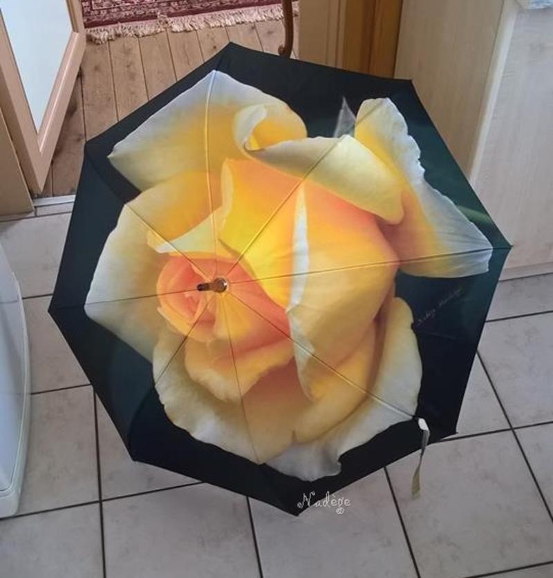 Parapluie original ...