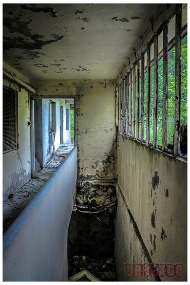Le sanatorium du koala