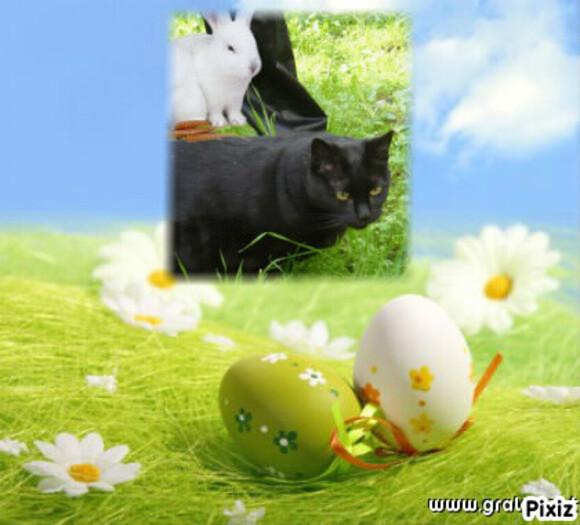 Bon lundi de Pâques à tous