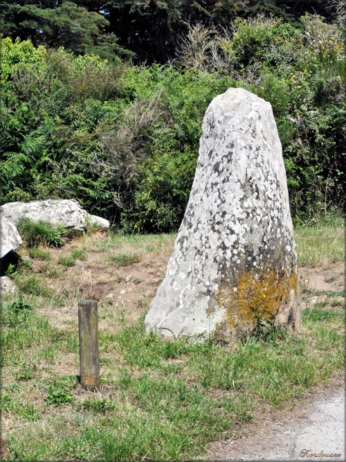 Photo du Dolmen de Grah-Niol à Arzon (Morbihan)