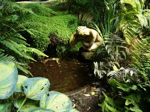 Visite-Les-Jardins-d-Yves---La-na--ade-de-la-source---2-06-07.jpg