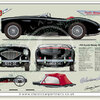 Austin Healey 100 1953-55