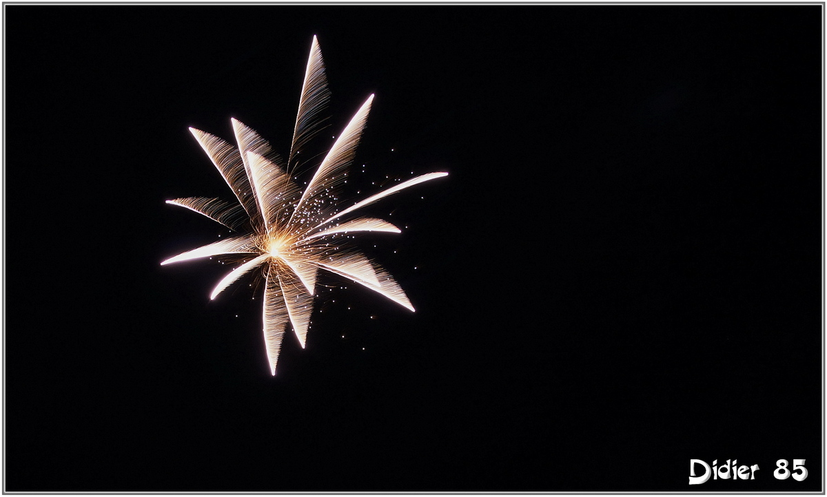 Feu d'artifice (1)
