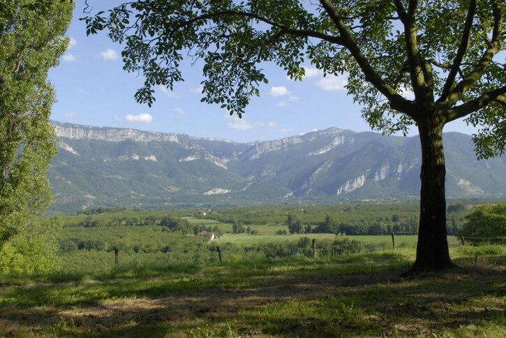 Photos-Villes du Monde 3:  La route de la (vraie) noix de Grenoble
