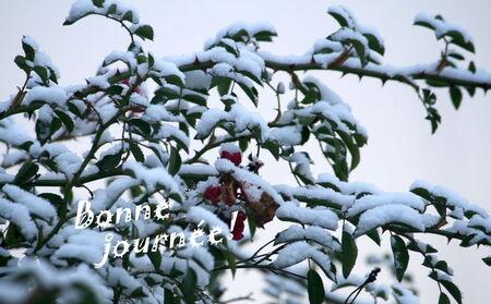 La_neige_076
