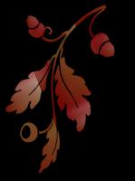 *** Whisper Of Autumn ***