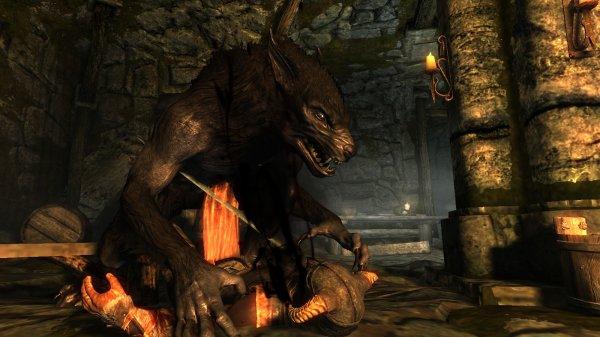 Comment nourrir mon loup garou ?