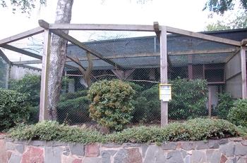 Zoo Saarbrücken 2012 161