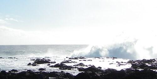 La Pointe au Sel et ses souffleurs en photos
