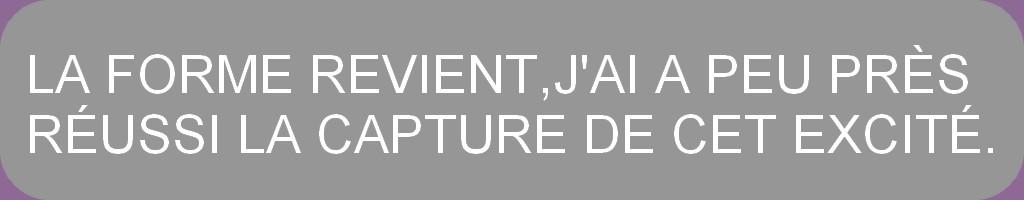 PHOTOS D'HIER ET AUTRES INSECTES 18 ° PAGE