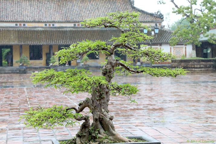 Cité impériale, Huê