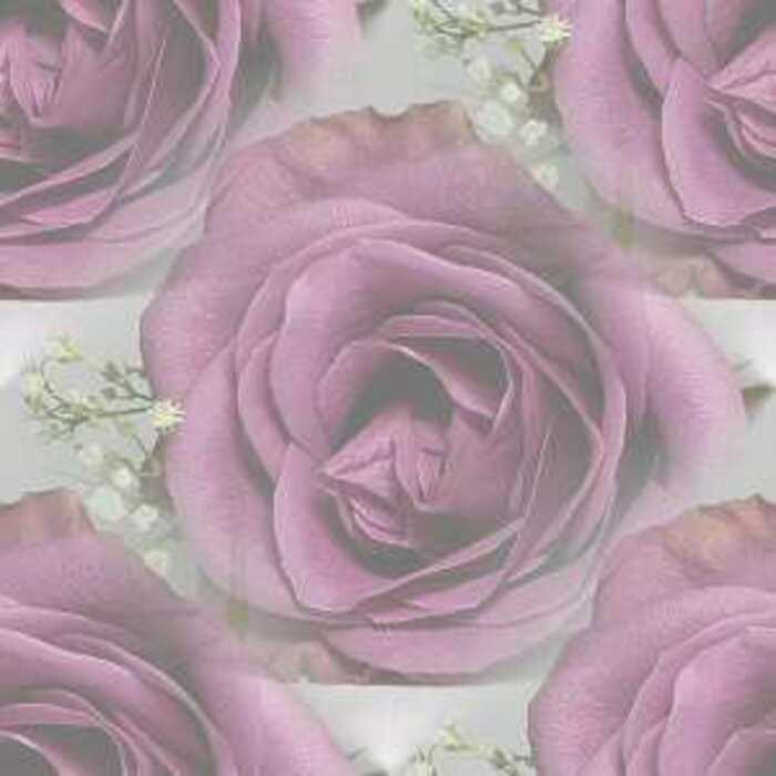 Fonds roses