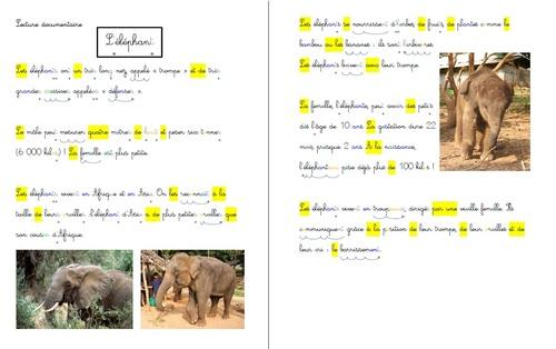 Lectures documentaires: Les animaux d'Afrique
