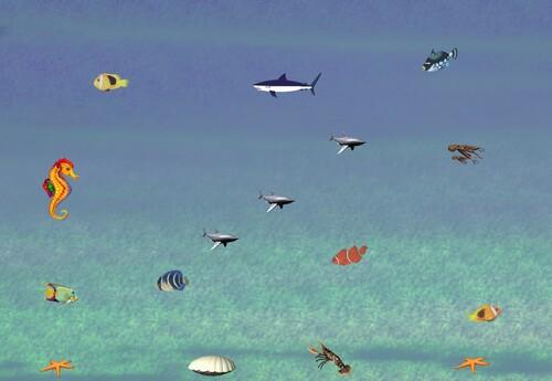 Fonds d'écran animés ou fixes poissons marins