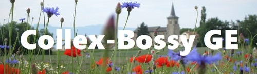 2e salon agora Collex-Bossy GE 2020
