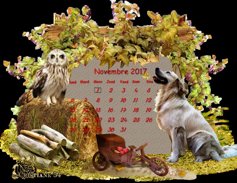 Pour mon amie Sissi calendar Novembre !