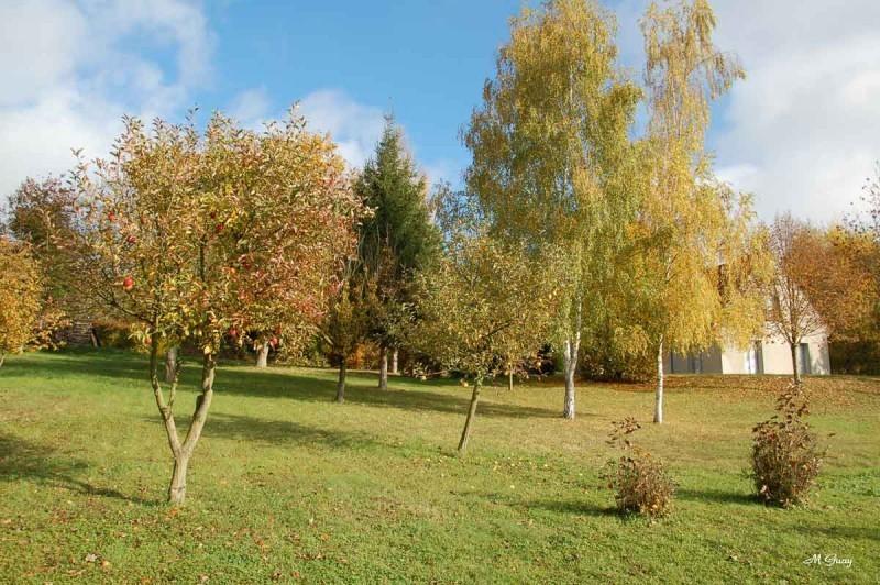 automne-terrain-6271.jpg