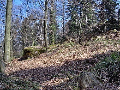 roche pierre piquee neuvevoie derzognier 040