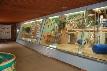 Zoo Saarbrücken 2012 151