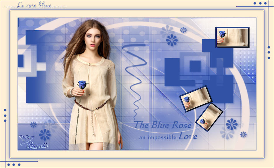 La rose bleu de violette