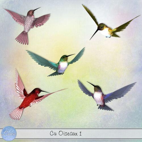 CU Mix 3 et Oiseaux 1