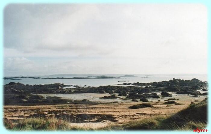 sur l'île Calot