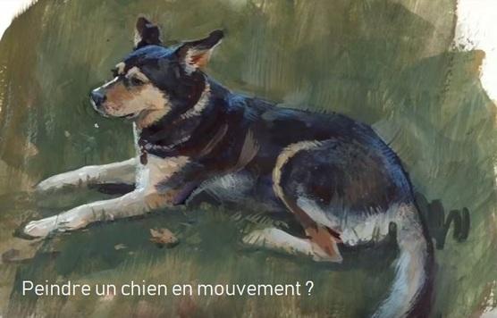 Dessin et peinture - vidéo 2847 : Comment peindre un chien en mouvement ? - aquarelle et gouache.