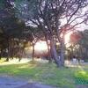 Lisbonne - Camping Monsanto