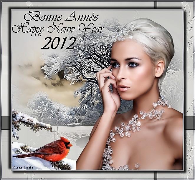 Meilleurs voeux pour l'Année 2012