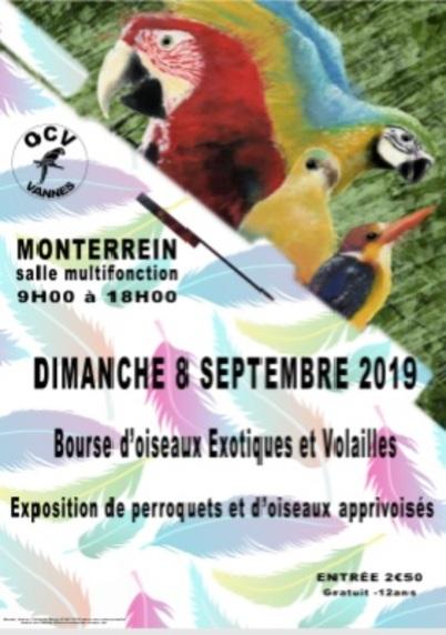 BOURSES MONTERREIN LE 8 SEPTEMBRE 2019