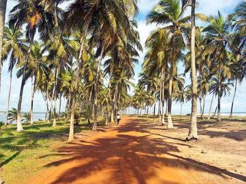 Mes photos - Assoinde (Côte d'Ivoire)