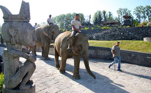 """Plus beau   parc zoologique  """"Domaine de Cambron"""" unique en """" Belgique """""""
