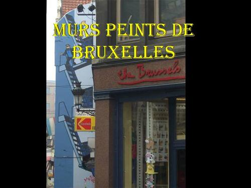 PPS PEINTURE TROMPE L OEIL  DE RUE