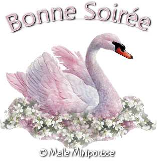 Bonne Soirée - 01