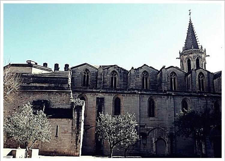 Cathédrale St Siffrein