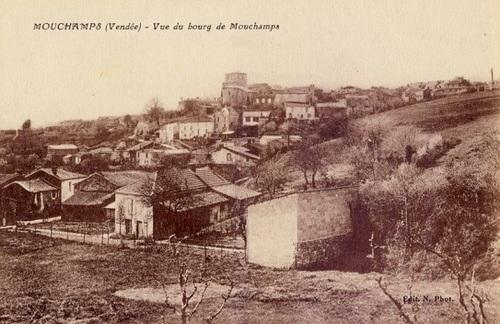Mouchamps (85)