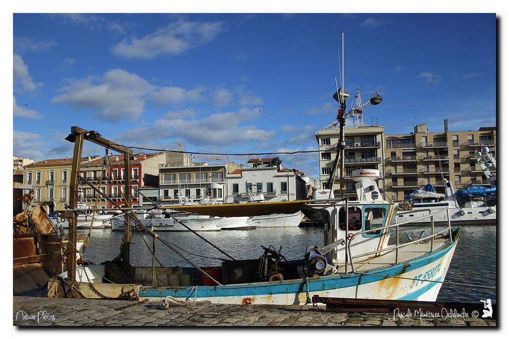 Infos du vendredi 29 janvier 2016 - Port de Sète