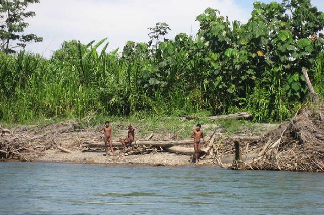Les dernières tribus d'Amazonie «au seuil de l'extinction»