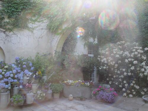 Un jardin très secret
