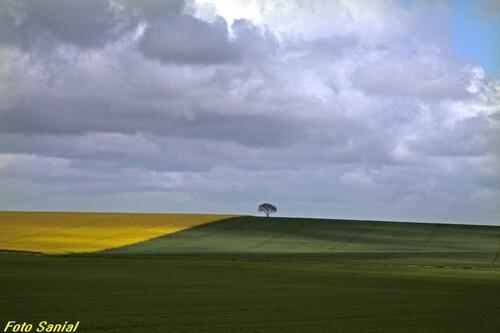 """""""Le Châtillonnais au printemps"""" de magnifiques photos de Bernard Sanial"""