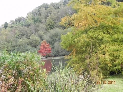 Parc Botanique Brest