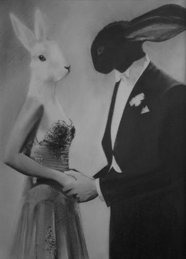 Des histoires de lapins