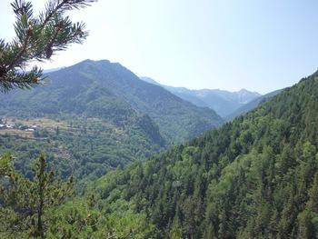 Vers l'amont de la vallée de la Ribérole