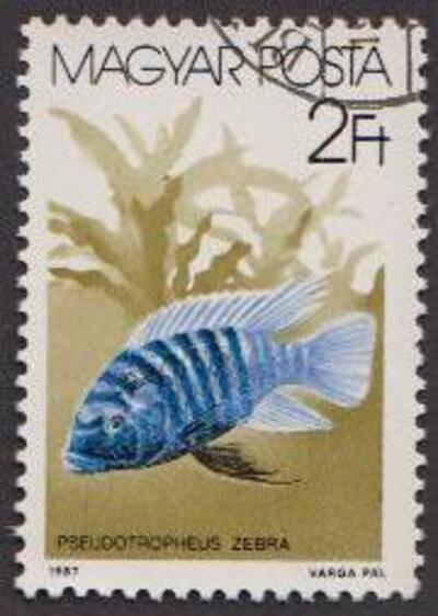 Poissons en timbres