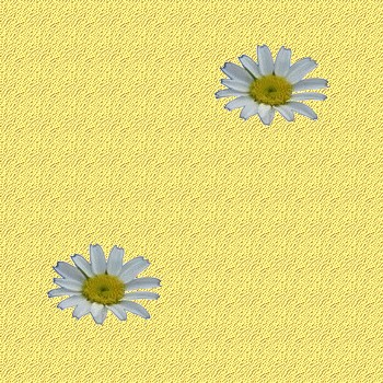 Fond de blog fleurs