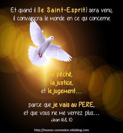 Collaborer avec le Saint-Esprit (1)