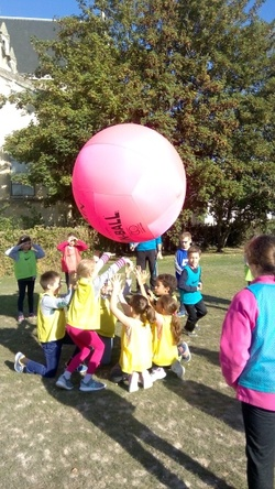 Initiation au Kinball en CE2/CM1